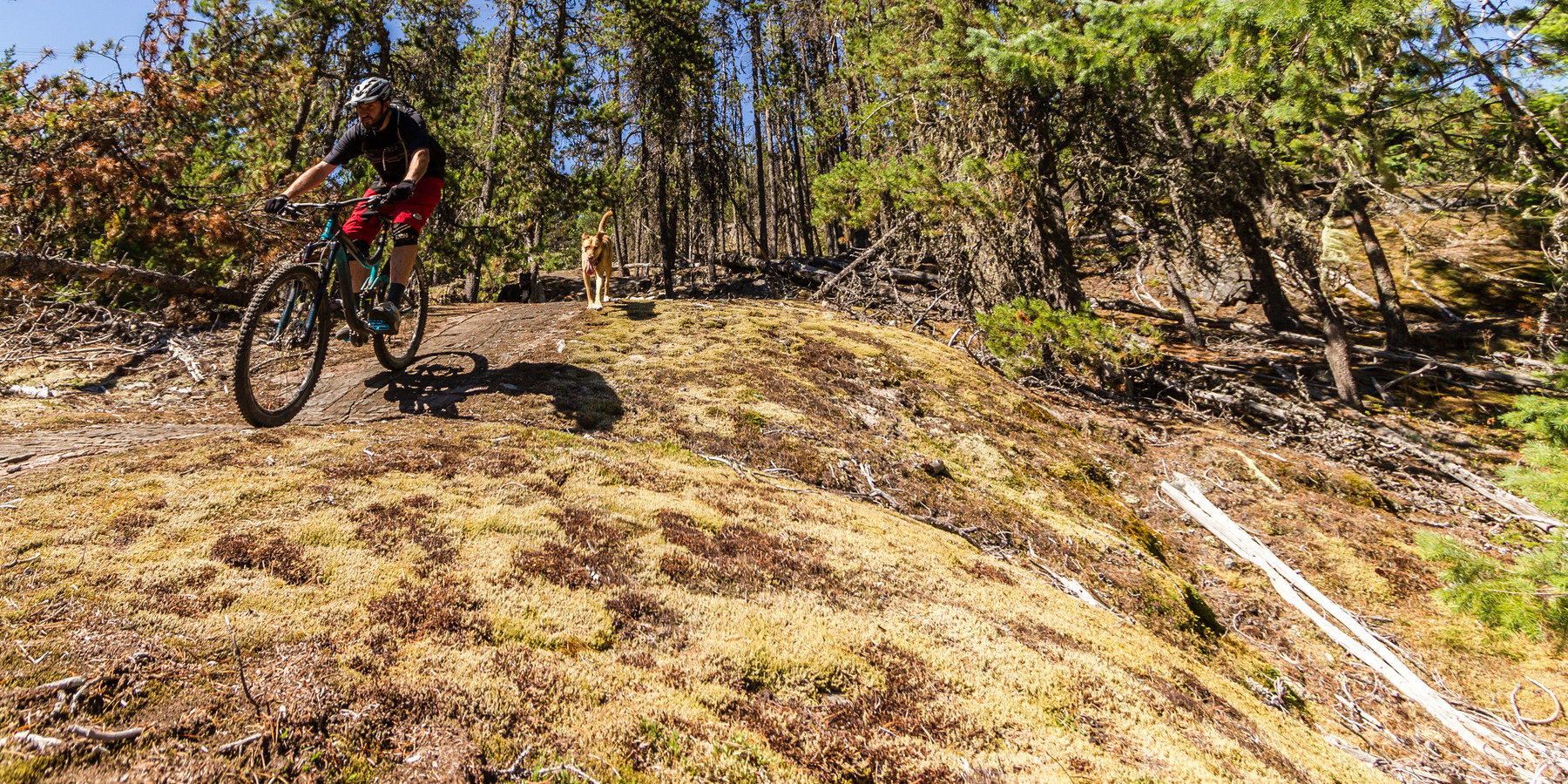 One Mile Lake Mountain Bike Trails Lumpy S Epic Outdoor