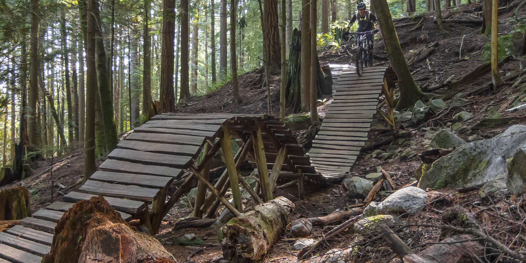 More wooden features along lower ladies mount fromme mountain bike trails ladies only