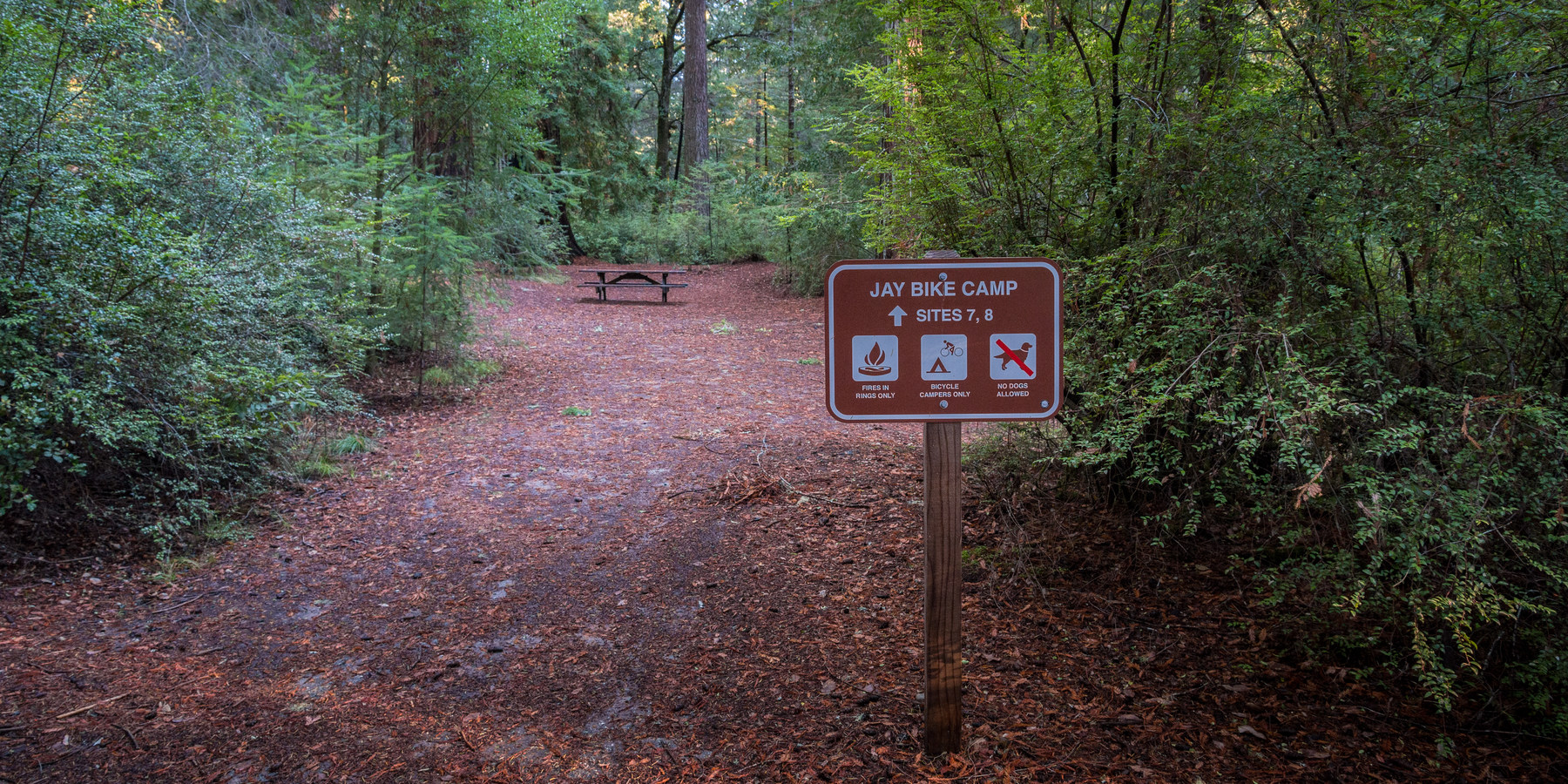 Jay Trail C& · Designated bike c&ing spots. & Jay Trail Camp | Outdoor Project