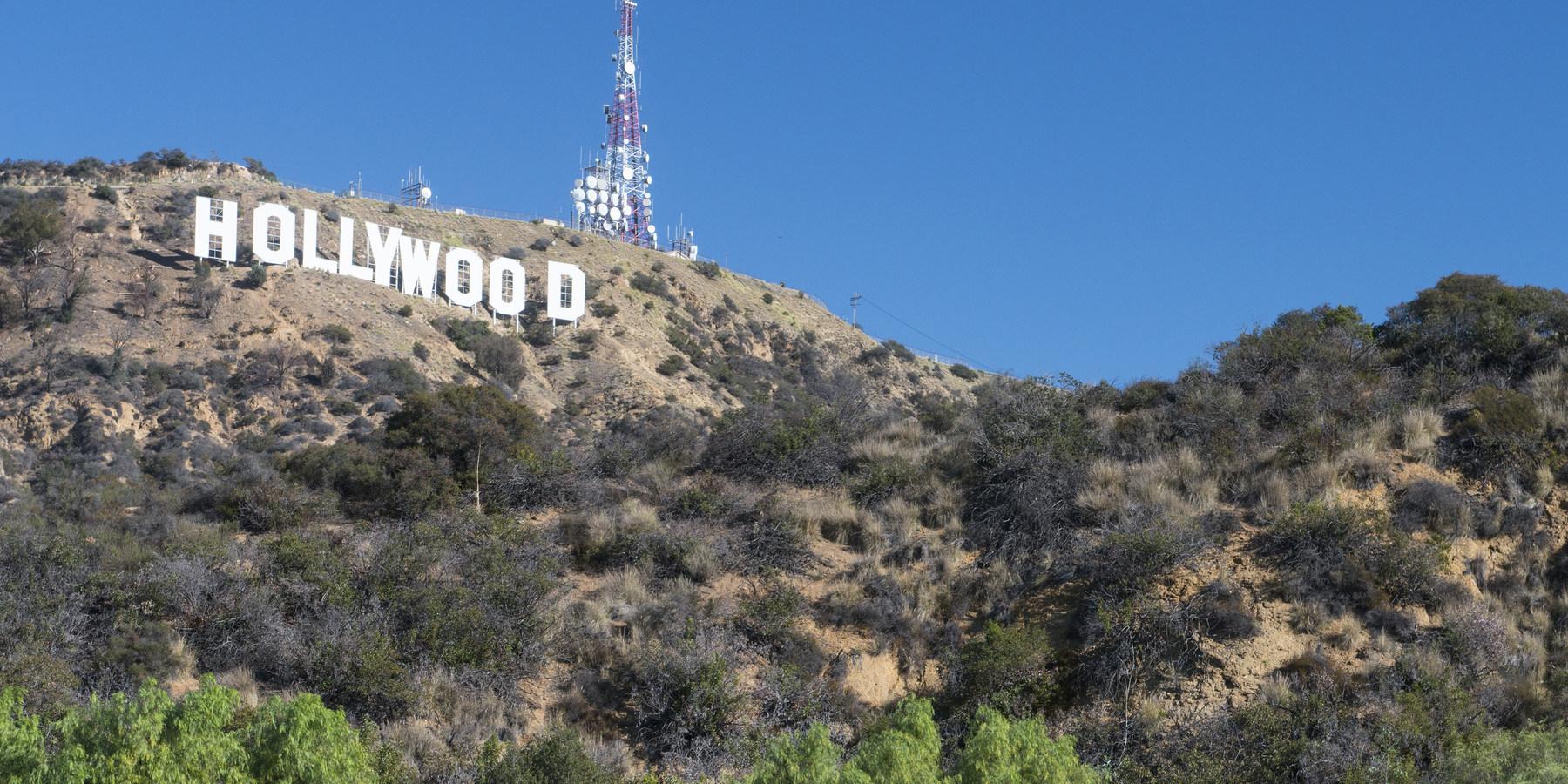 Dog Park Below Hollywood Sign