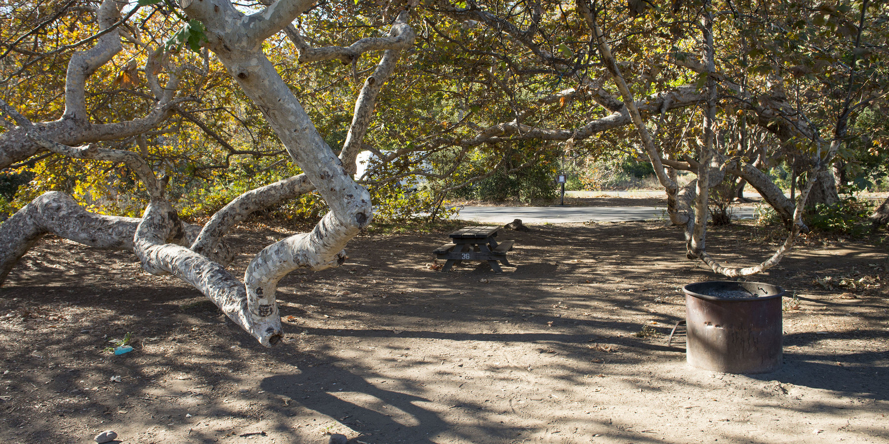 Leo Carrillo State Park Campground Outdoor Project