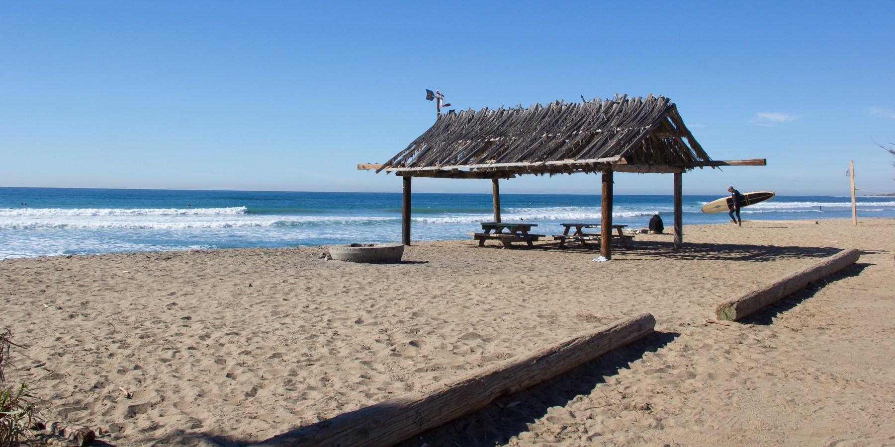 San onofre state beach swinger