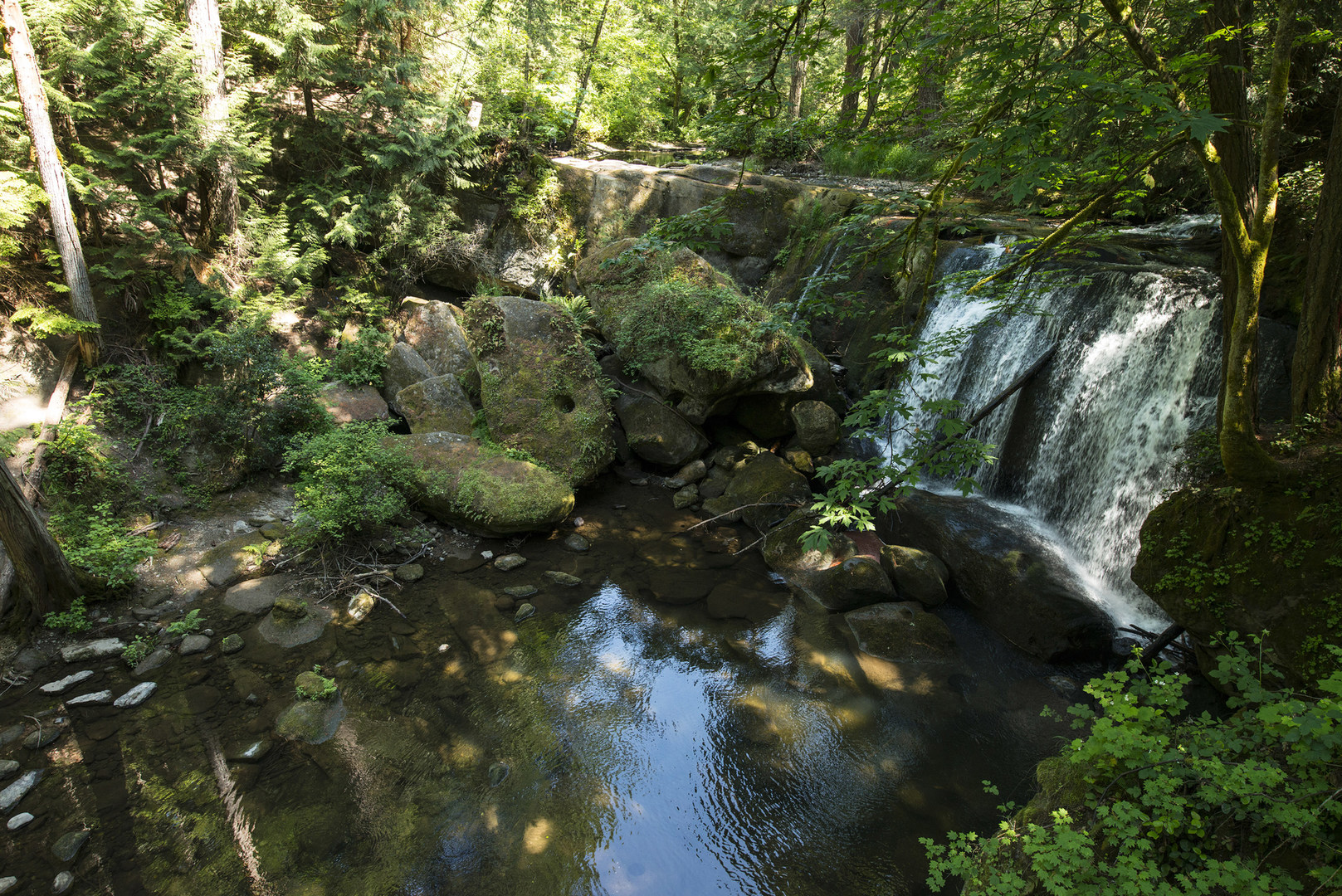 Whatcom Falls + Whirlpool Falls   Outdoor Project