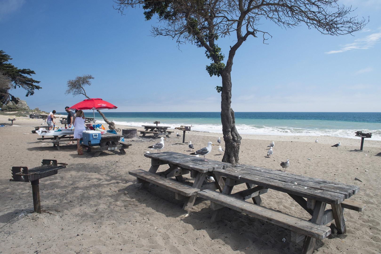 Sycamore Cove Beach