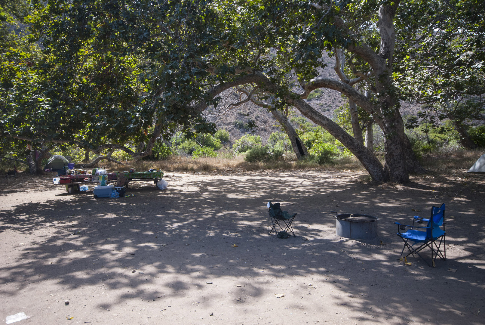 Sycamore Canyon Campground Outdoor Project