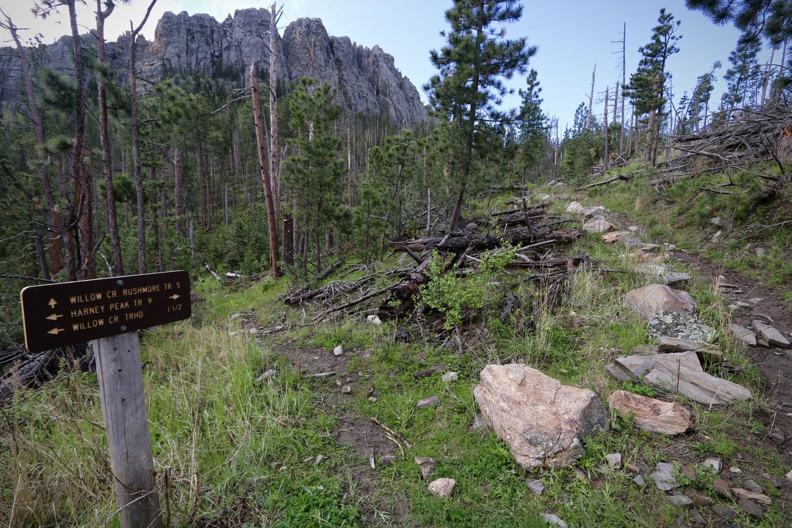 Black Elk Peak Via Willow Creek Outdoor Project