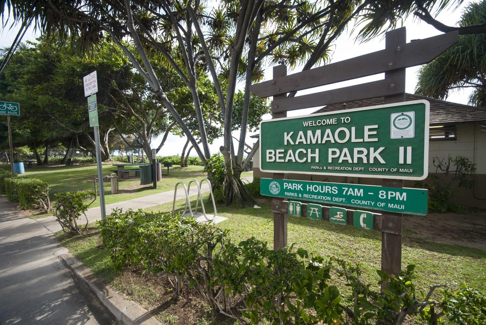 Ole Beach Park 2