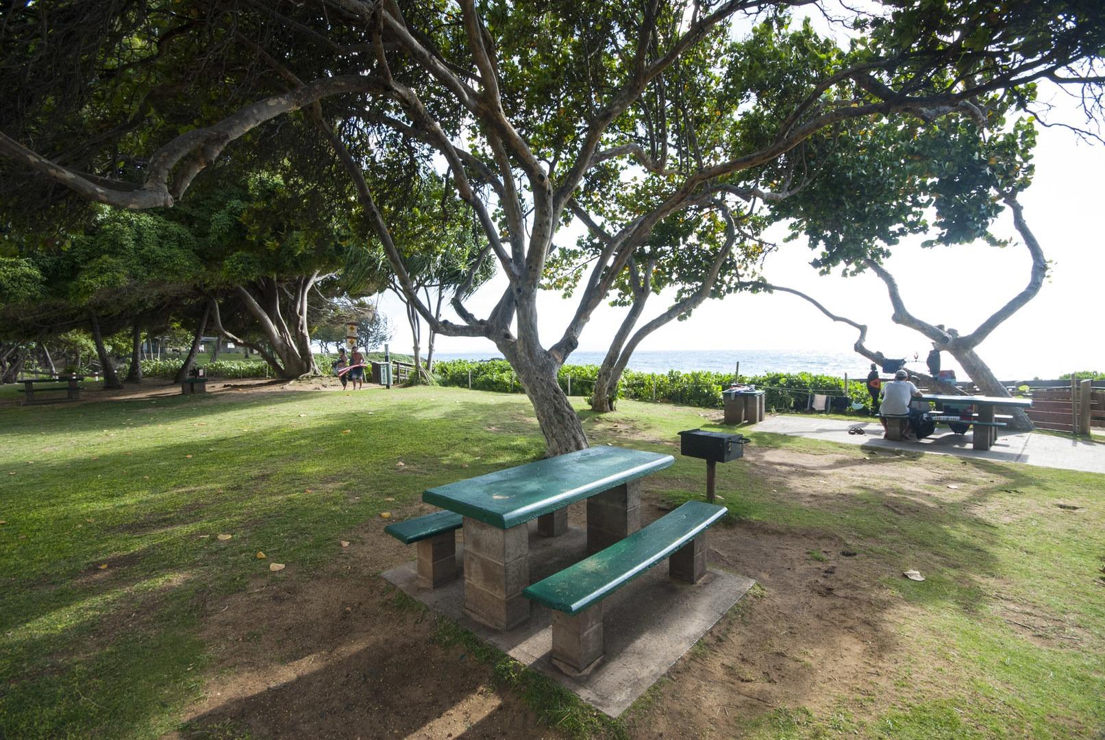 Picnic Area At Ole Beach Park 2