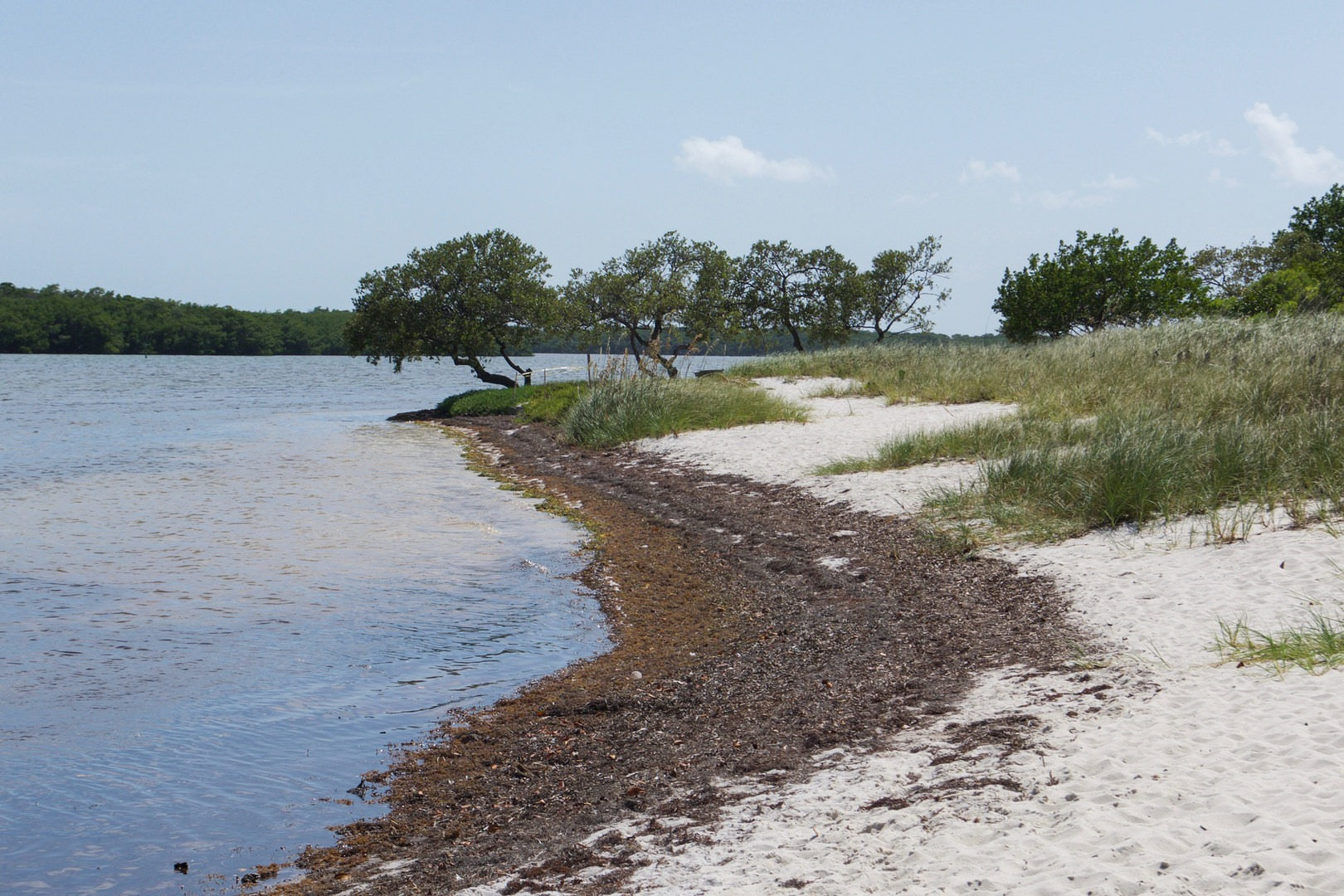 the shoreline at curry hammock state park   curry hammock state park     curry hammock state park   outdoor project  rh   outdoorproject