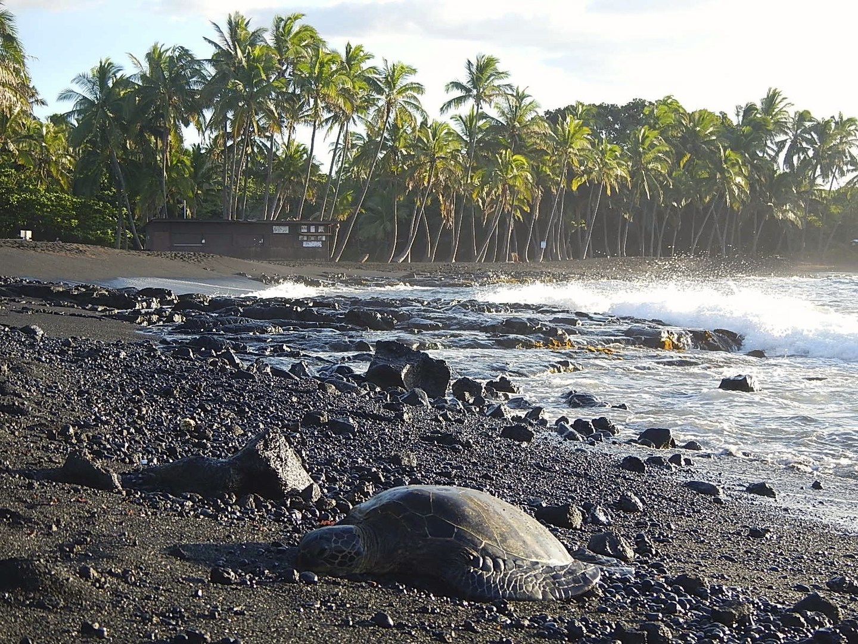 Punalu U Black Sand Beach Campground