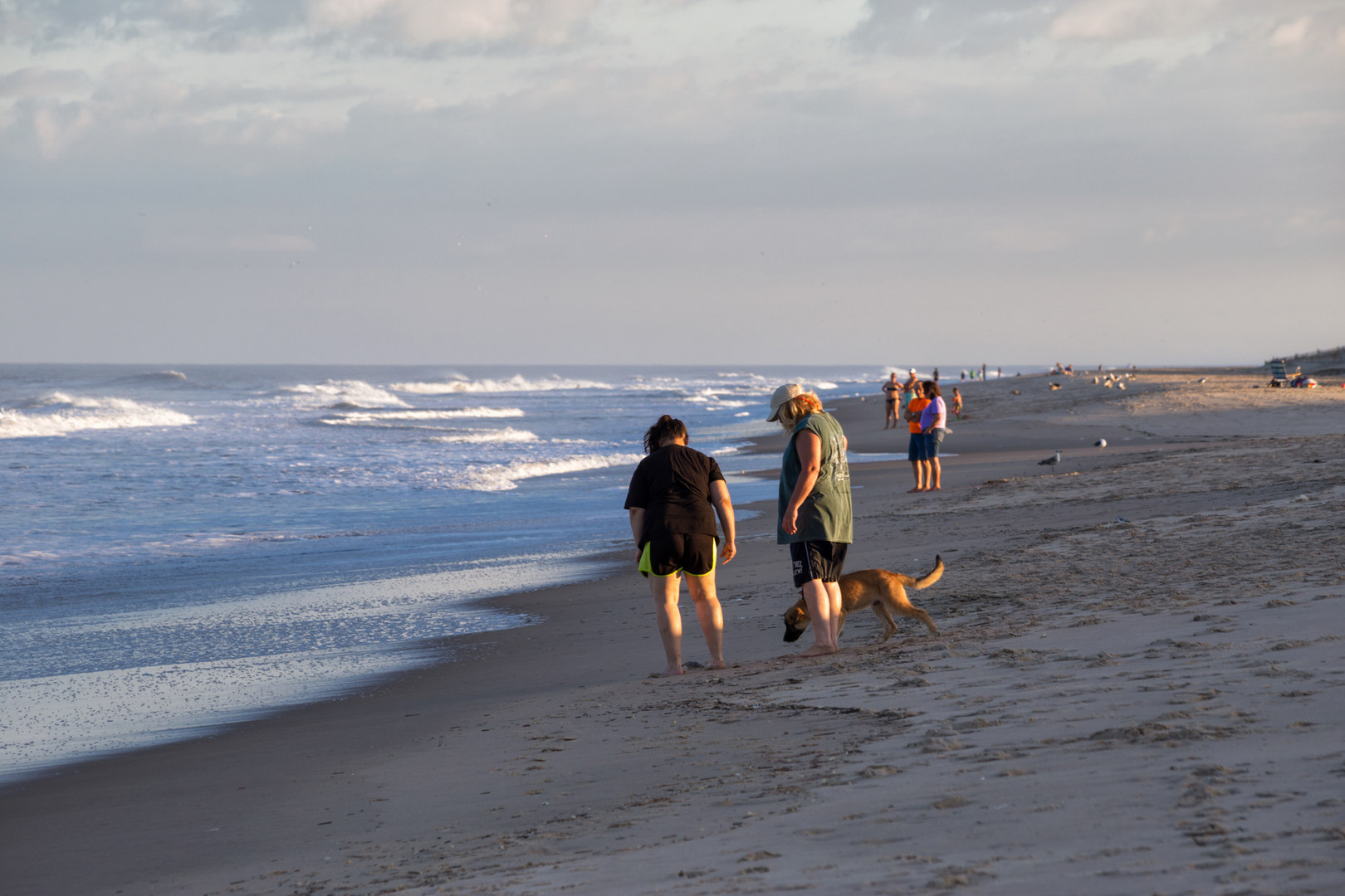 Are Pets Allowed At Fenwick Island State Park