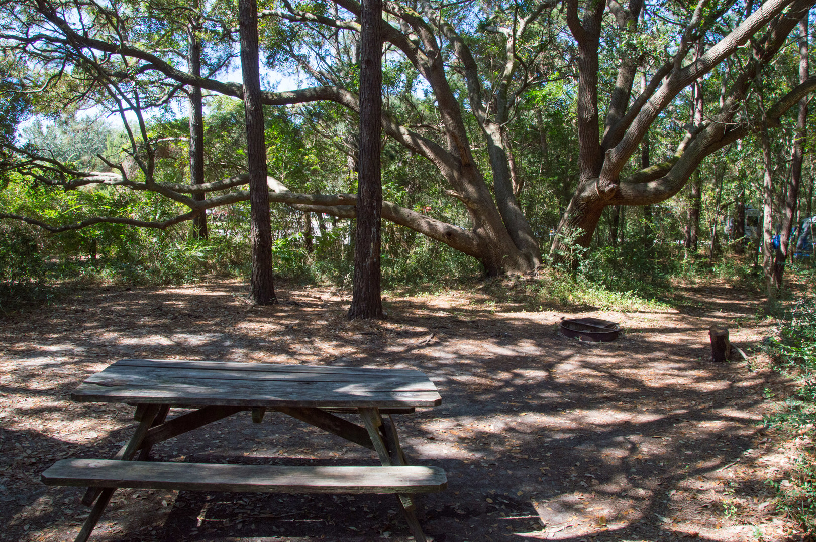 Huntington Beach State Park Campground Outdoor Project