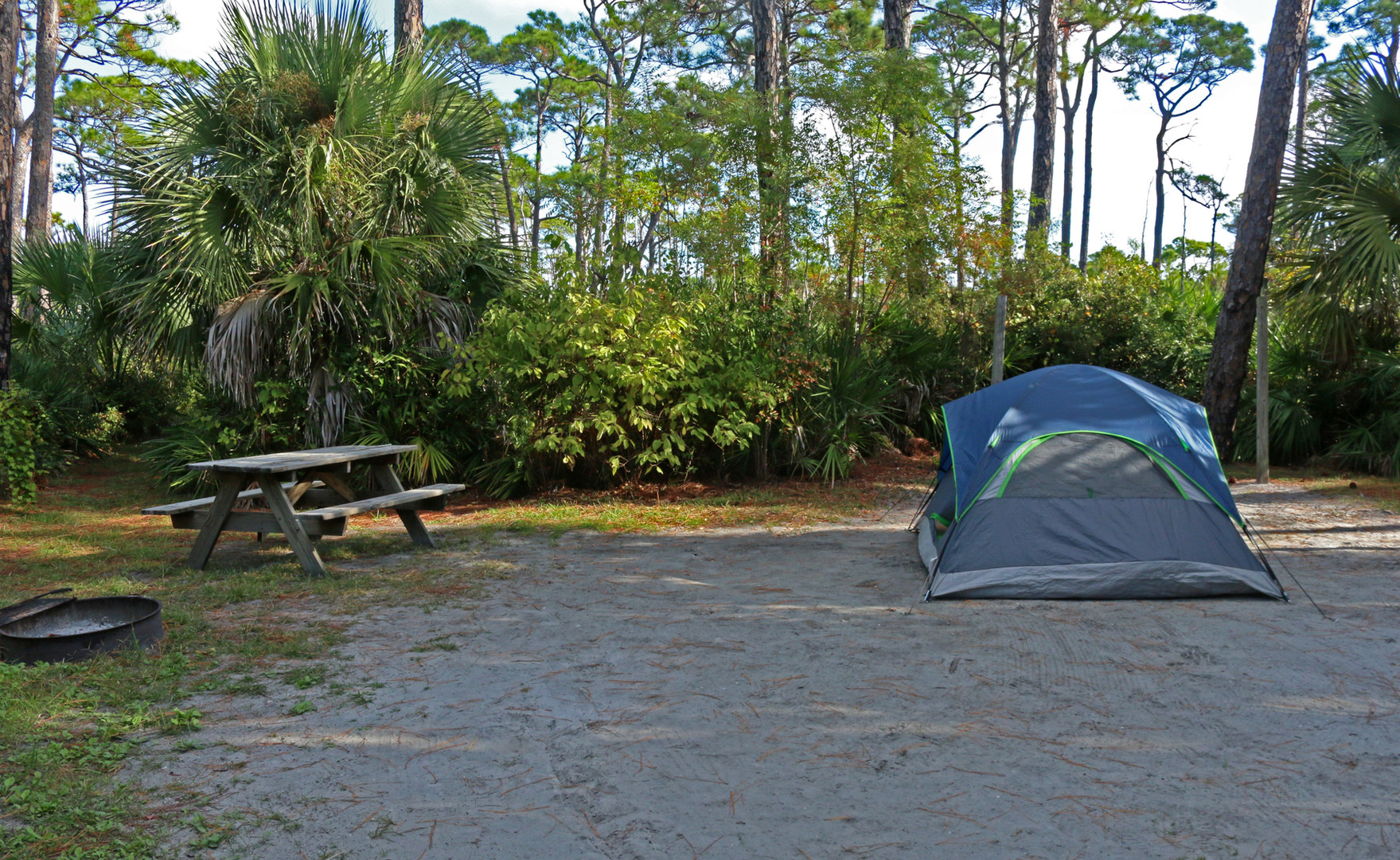 ... Joseph Peninsula State; Campsites Are Complete With Fire Rings And  Picnic Tables.  T. H. Stone Memorial St. ...