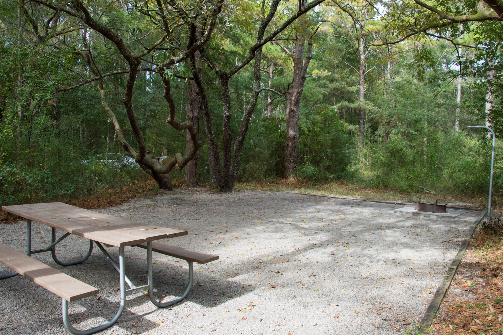 Carolina Beach State Park Campground