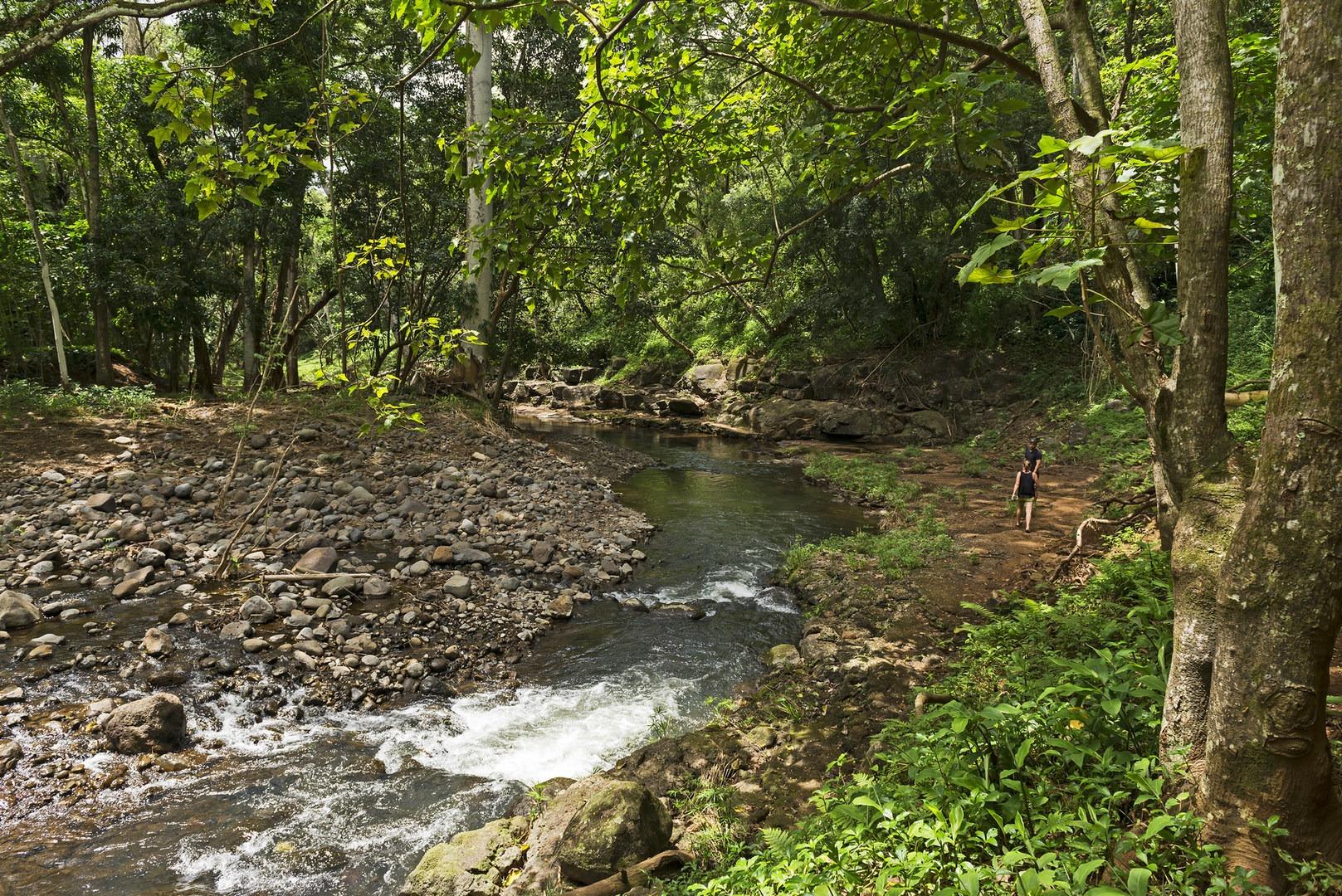 Ho\'opi\'i Falls Trail | Outdoor Project
