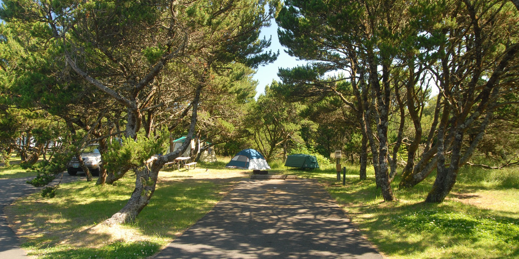 Nehalem Bay State Park Campground - camping in Oregon