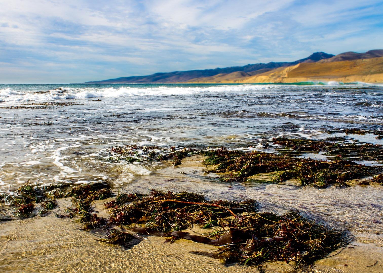 Best Of Santa Barbara Beaches Camping Parks