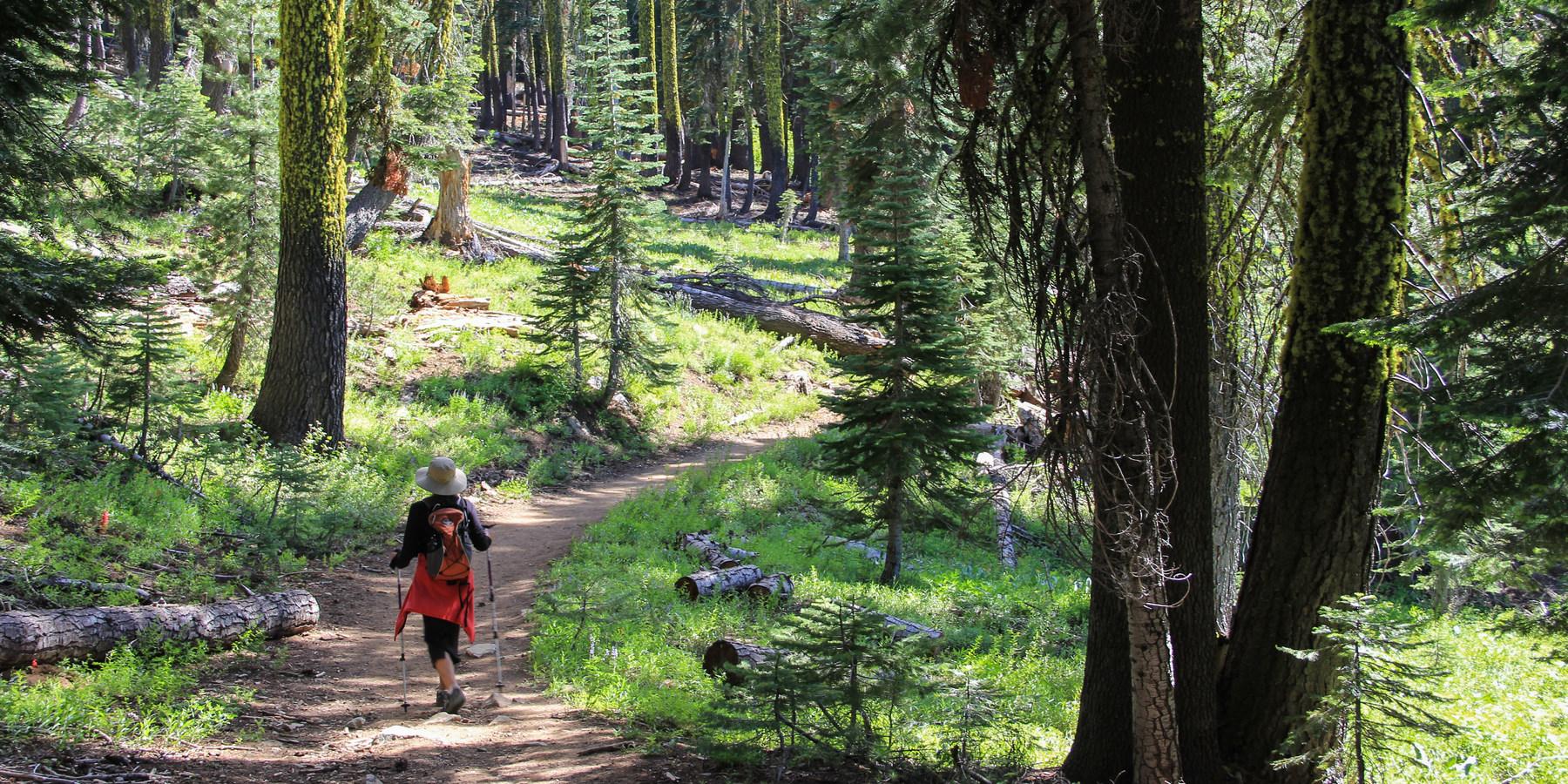 California's Best Lake Camping ...