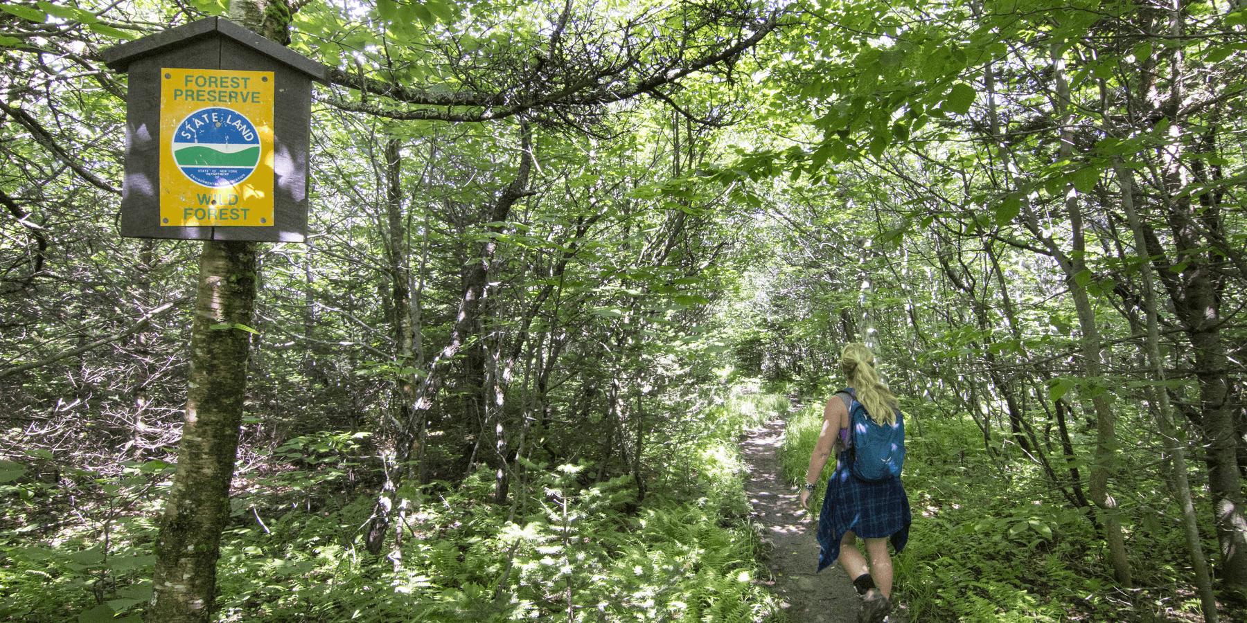 The 8 Best Hikes In New York S Catskills