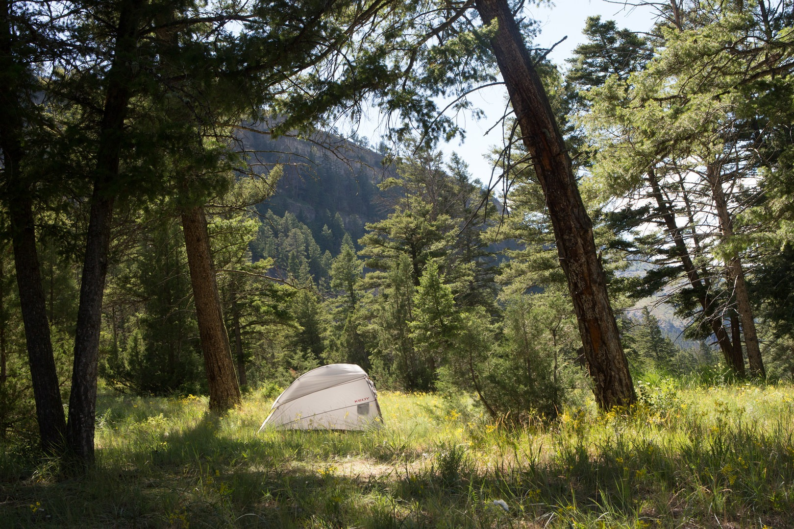 6 best backpacking trips in yellowstone national park - outdoor project