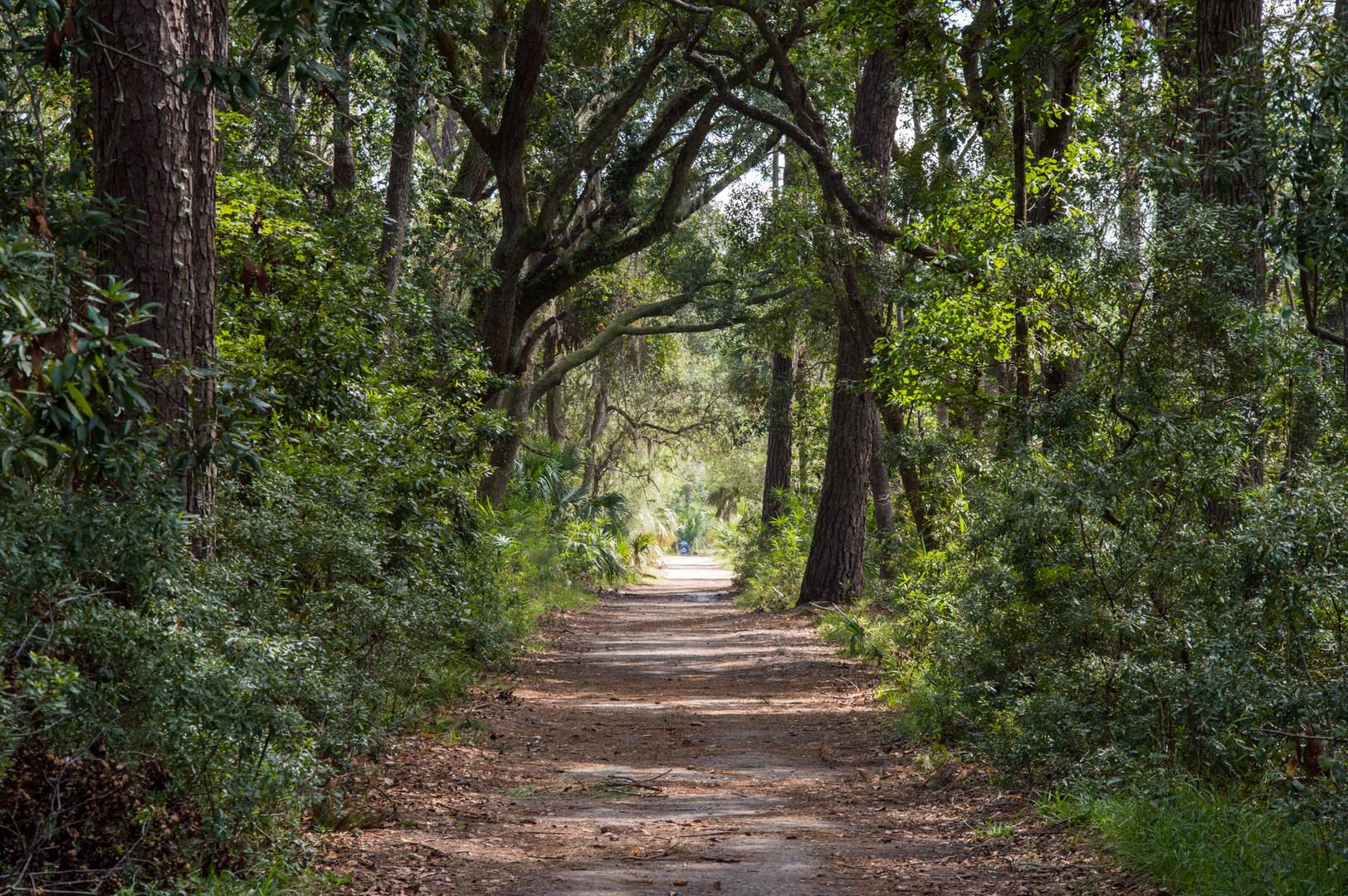5 Must Do Adventures Near Savannah Georgia Outdoor Project