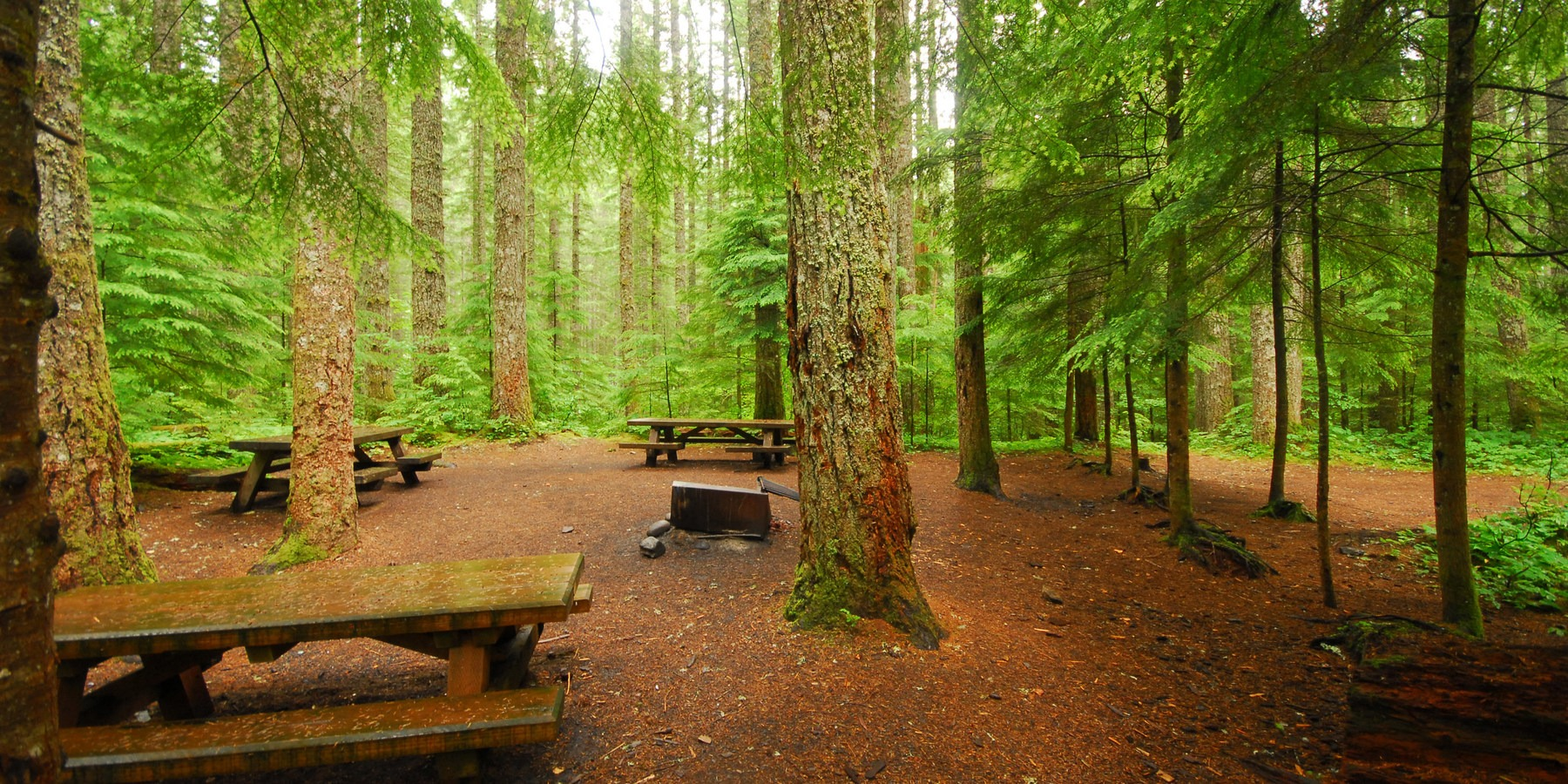 A Guide To Camping In Washington Outdoor Project