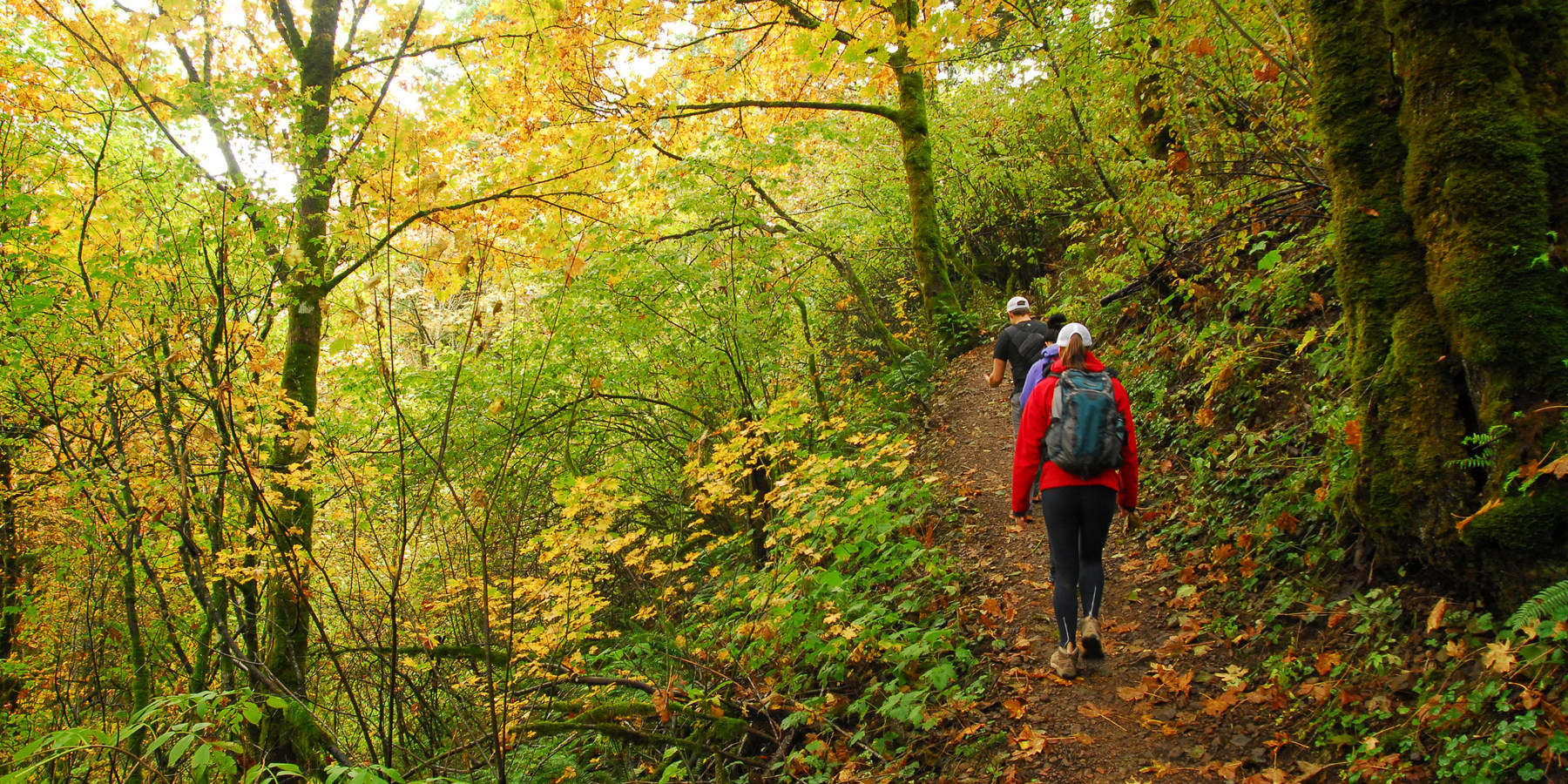 Best Hikes for Fall Colors in Washington - Outdoor Project