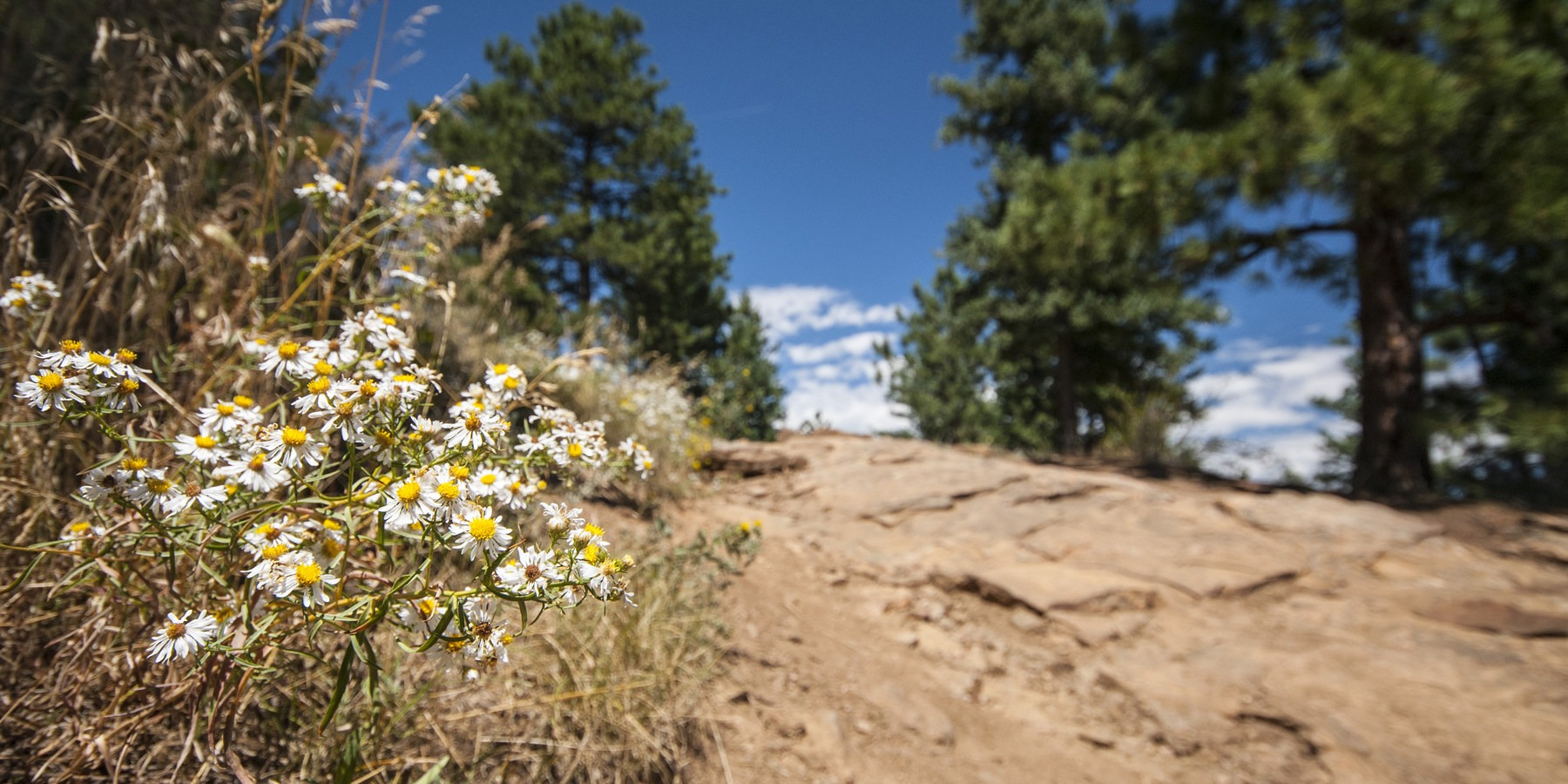 Com Continuous News Colorado >> Denver's Best Day Hikes - Outdoor Project