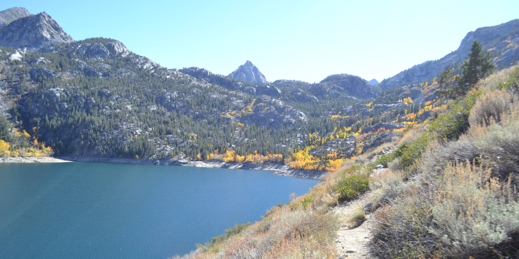 15 of California's Best Dog-Friendly Hikes · Yellow aspens grow along the  Middle Fork of Bishop Creek down to the inlet on Lake ...