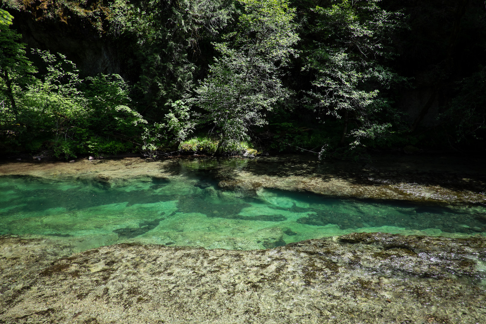 10 Of Eugene 39 S Best Swimming Holes Outdoor Project