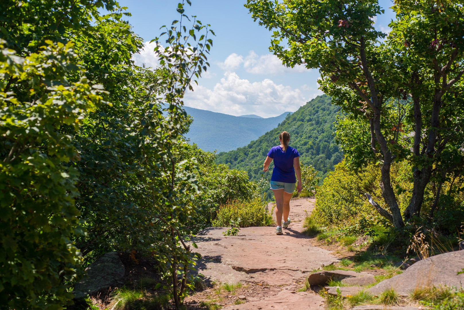The Best Hikes In New
