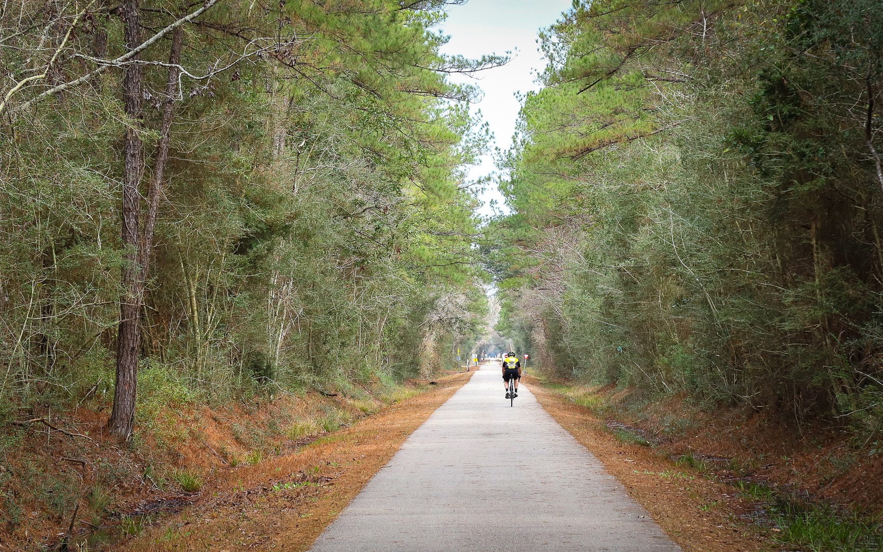 Incredible Louisiana Hiking Biking Trails For Your Bucket List