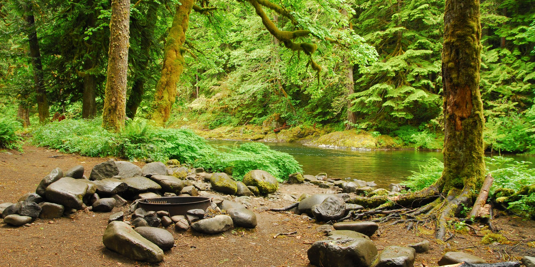 Escape to mount hoods 17 best campgrounds outdoor project backcountry campsite along the salmon river old trail escape to mount hoods 17 publicscrutiny Image collections