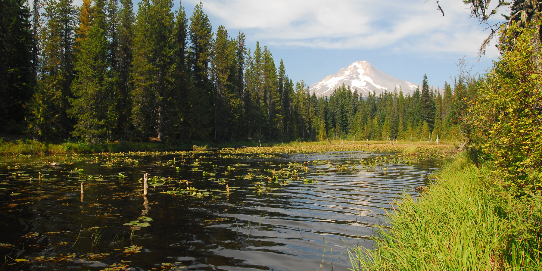 Escape to mount hoods 17 best campgrounds outdoor project mount hood from trillium lake campground escape to mount hoods 17 best campgrounds publicscrutiny Image collections