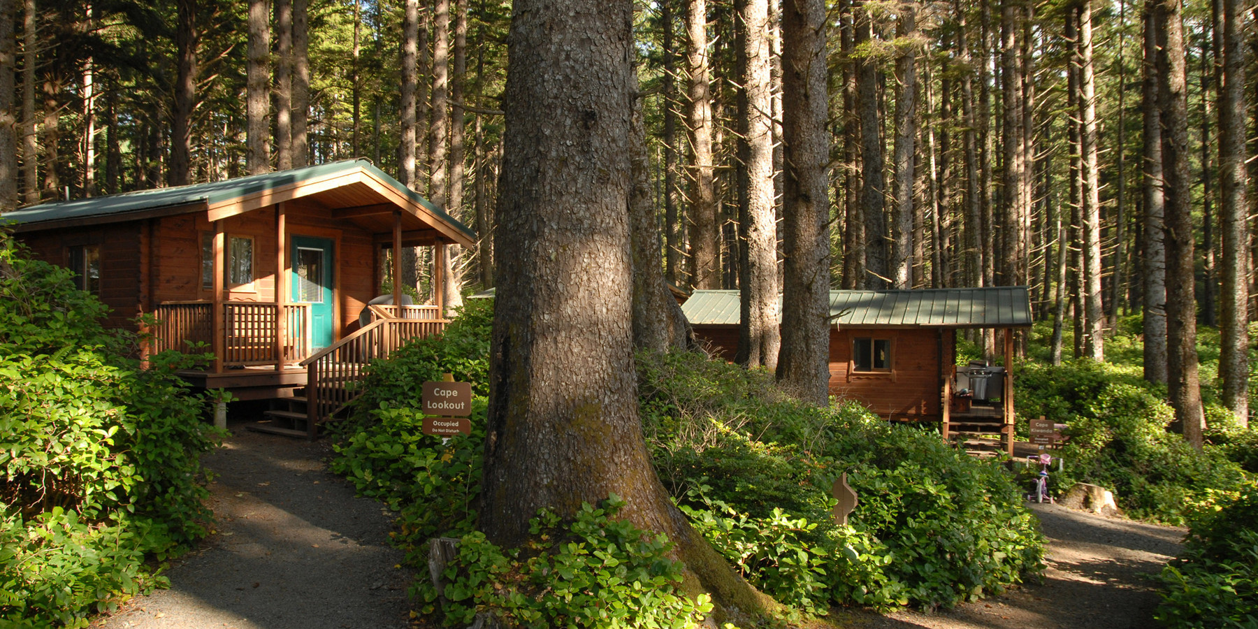 ... Rental Cabins At Cape Lookout State Park  Best Coastal Campgrounds In  Oregon And Washington ...