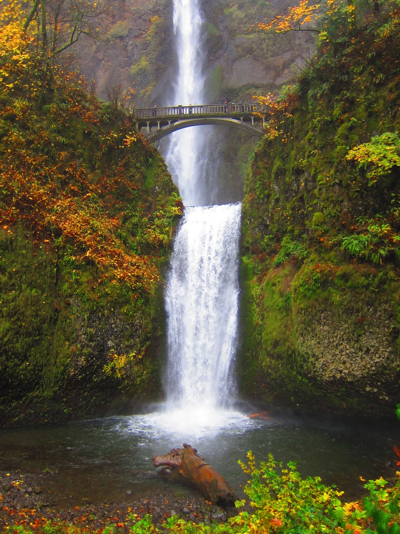 waterfalls in oregon map with Waterfall Hikes Columbia River Gorge on 2869583673 likewise Oregon moreover 1 Silver Falls State Park Five Josh Whalen besides Sweet Creek together with Multnomah Falls Trail.