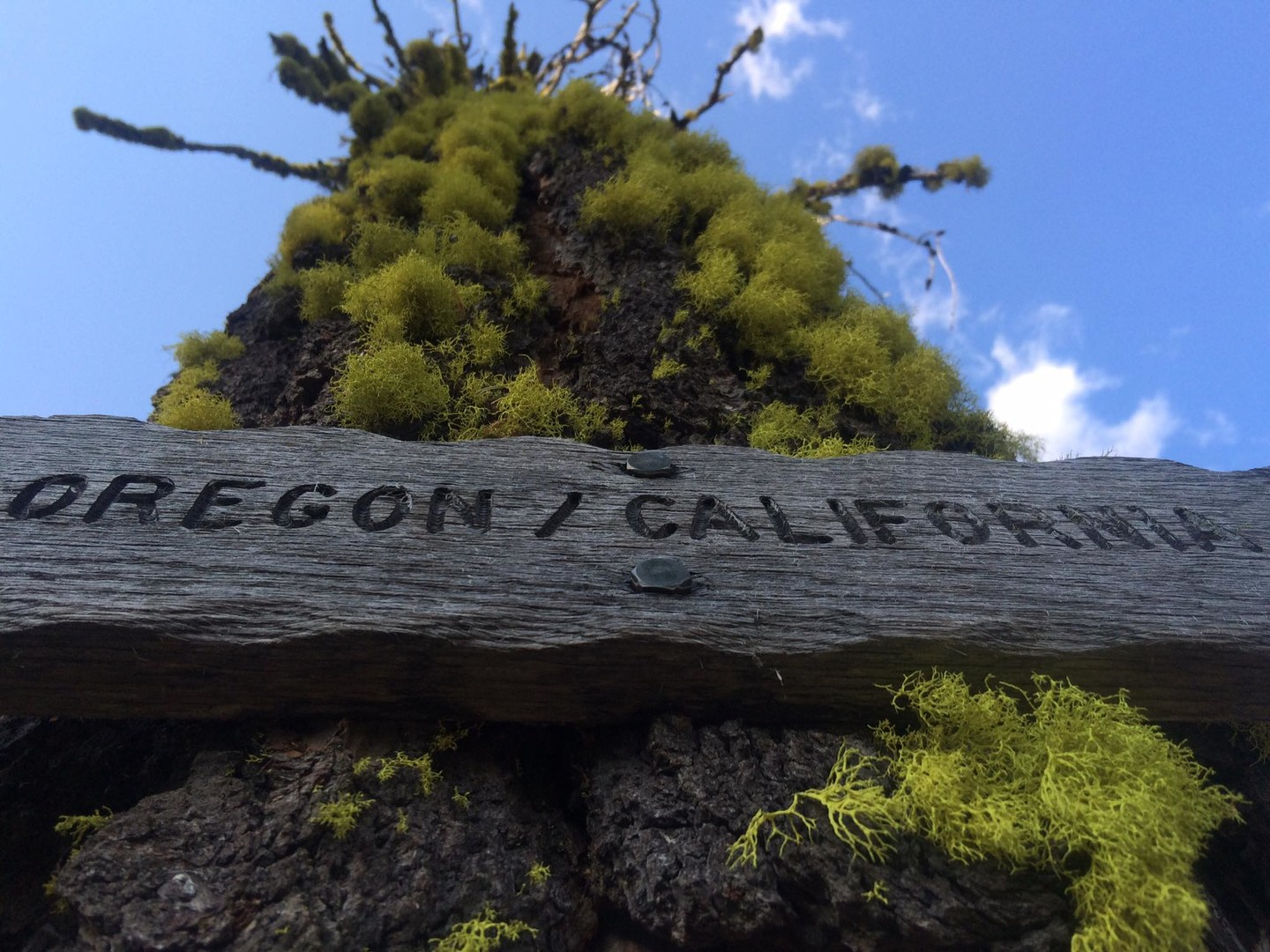 A huge milestone along the PCT is getting through California!- Solo Hiking the Pacific ...