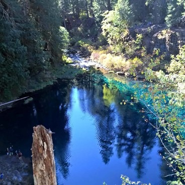Welcome back to Tamolitch!- McKenzie River Trail
