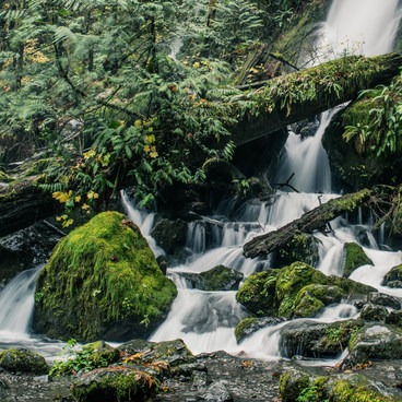 Merriman Falls - Merriman Falls