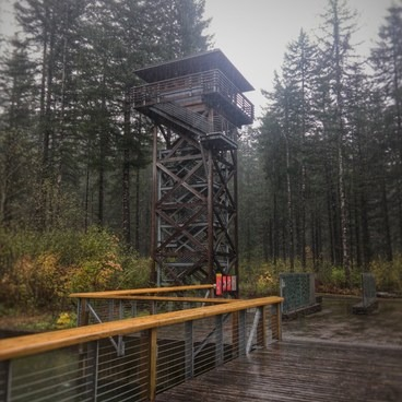 Replica fire watch tower in front of the center- Wilson River + Tillamook Forestry Center