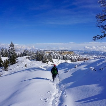 Contributor Ben Dlin forges a trail in the snow.- Fairyland Loop