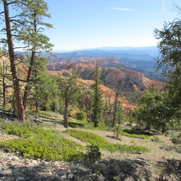 Under-the-Rim Trail to Hat Point