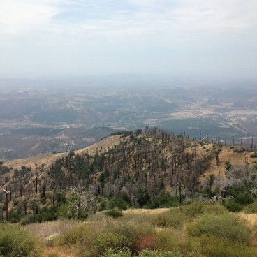 View from the lookout tower- Palomar Mountain State Park