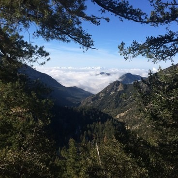 View from the trail.- Mount Baldy Summit via Ski Hut Trail
