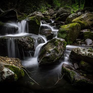 A side creek on the Rainbow Falls Trail. - Rainbow Falls Trail via LeConte Creek