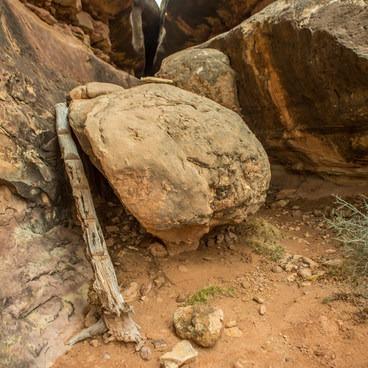 Trail up log climb through slot canyon- The Needles