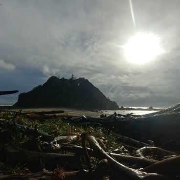 Toleak Point- Olympic South Coast Wilderness Trail, La Push to Hoh River