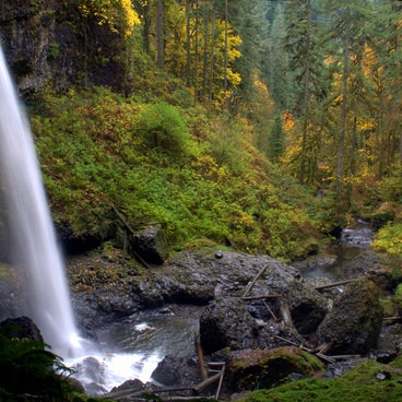 North Falls at Silver Falls State Park.- Silver Falls, Trail of 10 Falls