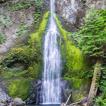 Marymere Falls in Olympic National Park.- Marymere Falls Hike