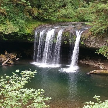 Butte Creek Falls from the trail.- Butte Creek Falls Hike